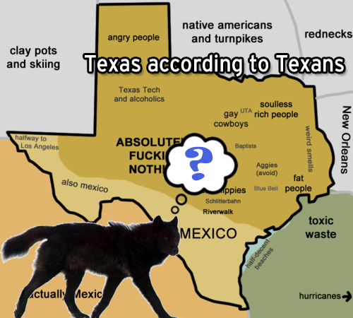 Wolf raids Texas