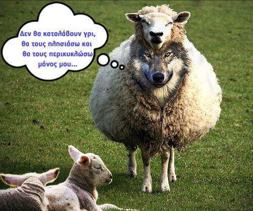 Βάλανε το λύκο να φυλάει τα πρόβατα